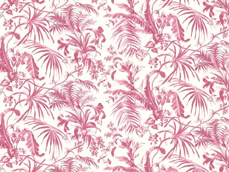 Tropical Garden 7